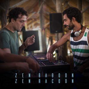 zen baboon